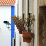 Boa parte das casas é adornada com plantas nas janelas.